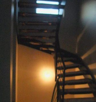 escalier limon central  en fer plat2